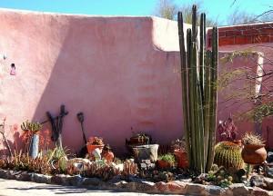 desert garden3