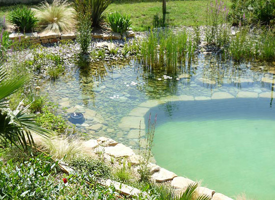 Natural-Swimming-Pool