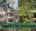 Laundry to Landscape Greywater System Explained in Five Steps