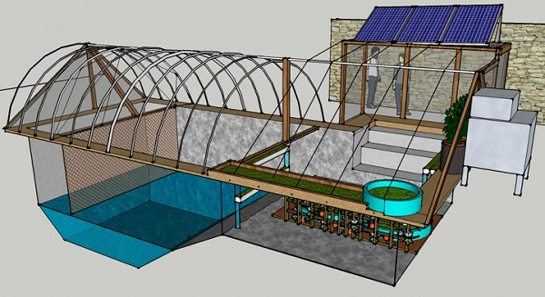 Walipini A Smart And Simple Underground Greenhouse For