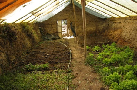 underground greenhouse