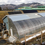 New Passive Solar Greenhouse Design Maximizes Solar Inputs and Reduces Energy Waste