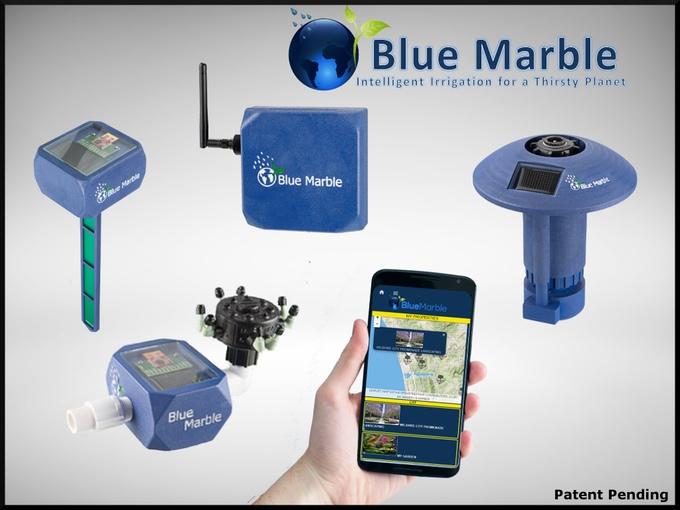 blue marbel1