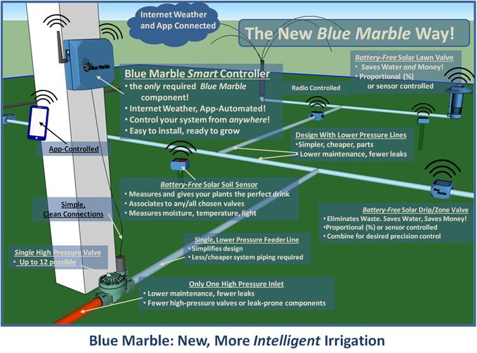 blue marbel3