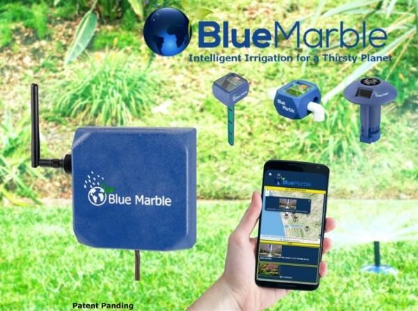 bluemarbel11