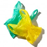 To Ban or not to Ban Plastic Bags in San Jose?