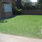 Fake Grass, Synthetic Turf or Stepford Lawns?