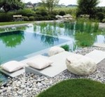 Adios Chlorine, Hello Natural Swimming Pool!