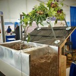 An Innovative Lightweight Living Roof Design – Planter Box and Trellis Retrofit System